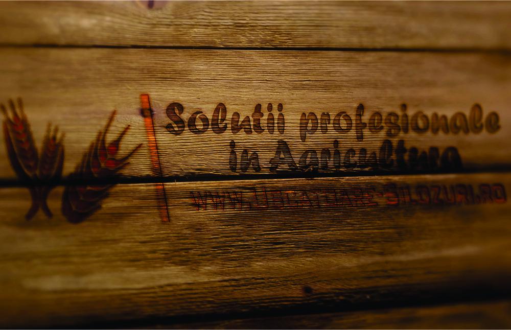 Logo Uscatoare Silozuri
